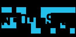 N-O-I-S-E logo